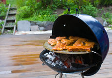 Barbecue time. Different kind of pork meat on the grill royalty free stock image