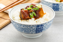 Barbecue tofu with rice Royalty Free Stock Photography
