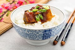 Barbecue tofu with rice Stock Photos