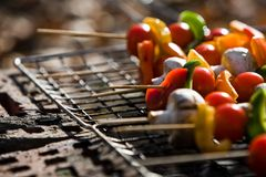 Barbecue Vegetables Stock Images