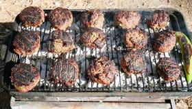 Barbecue voor een picknick Stock Afbeelding