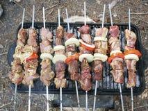 Barbecue voor een picknick Stock Afbeeldingen