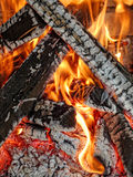 Barbecue wood fire. Hot wood fire prepared for traditional barbecue Stock Images