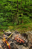 Barbecue in the woods. Barbecue on the stone in the forest stock photo