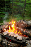 Barbecue in the woods. Barbecue on the stone in the forest royalty free stock image