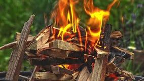 Barbecuebrand die in openlucht branden stock videobeelden