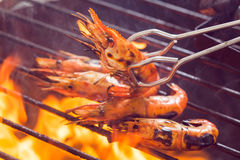 barbecued photos stock
