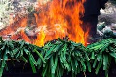 Barbecued calçots Fotografia Stock