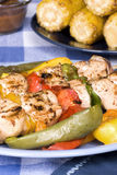 Barbecued chicken kebab dinner Stock Image