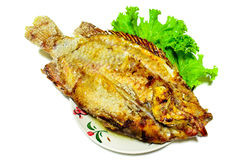 Barbecued fish. BBQ fish on a [late with lettuce Royalty Free Stock Photos