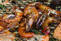 Barbecued giant shrimps Royalty Free Stock Photography