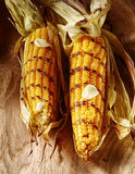 Barbecued grilled fresh corn on the cob. Garnished with a dollop of melted butter for a healthy autumn or fall snack or appetizer, two viewed high angle Royalty Free Stock Image