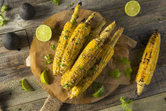 Barbecued Homemade Elote Mexican Street Corn Royalty Free Stock Images