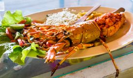 Barbecued lobster. Lobster is a seafood which is nicely barbecued or roasted in tandoor. A delicacy of Goa royalty free stock image