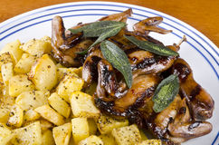 Barbecued Quails with Roasted Rutabaga #2 Royalty Free Stock Photo