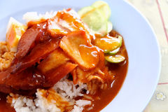 Barbecued red pork in sauce with rice Royalty Free Stock Image