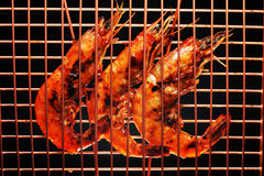 Barbecued shrimp. On a grilling rack stock images