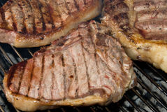 Barbecued steaks Stock Image