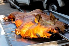 Barbecued suckling pig or Roasted suckling pig.  stock images