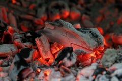 Barbecuegloed Royalty-vrije Stock Fotografie
