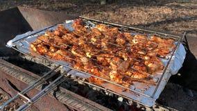 Barbecuekip op de steenkolen, in aard stock footage