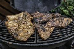 Barbecuepartij Stock Afbeeldingen