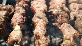 Barbecuepartij Het koken van heerlijk vlees bij openluchtgrill stock video