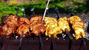 Barbecues de chiches-kebabs de poulet et de veau sur le gril banque de vidéos