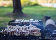 Barbecues in the woods Stock Photos