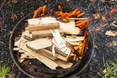 Barbecuevoorbereiding Royalty-vrije Stock Foto