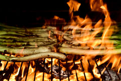 Barbecuing calcots, sweet onions typical of Catalonia, Spain Stock Photos