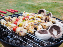Barbecuing chicken, vegetables and champignon Stock Photos