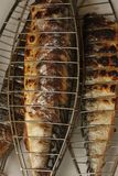 Barbecuing mackerel on charcoal fire closeup image. Stock Photo