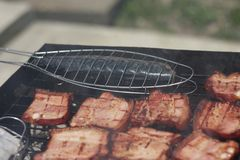 Barbecuing meat on charcoal fire closeup image. Royalty Free Stock Photo