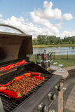 Barbecuing Skewers and red Chillies Royalty Free Stock Photo