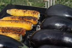 Barbecuing vegetables on charcoal fire. Stock Image