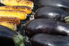 Barbecuing vegetables on charcoal fire closeup image. Royalty Free Stock Images