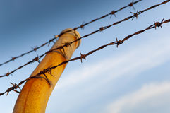 Barbed Fence Stock Photography