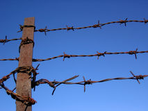 Barbed fence. Royalty Free Stock Images