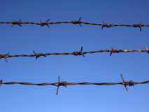 Barbed fence. Royalty Free Stock Photography