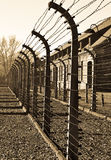 Barbed fence from Auschwitz camp Royalty Free Stock Photo
