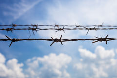Barbed fence royalty free stock photography