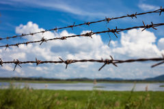 Barbed fence Royalty Free Stock Image