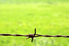 Barbed fence wire Stock Photos
