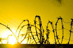 Barbed Perimeter Fence Stock Image
