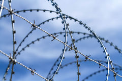 Barbed and razor wire fence Stock Images