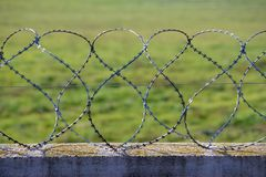 Barbed Razor Wire Stock Images