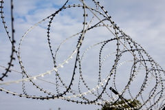 Barbed razor wire Royalty Free Stock Photo