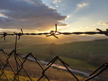 Barbed sunset Royalty Free Stock Photos