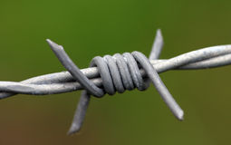 Barbed wire. Close up of barbed wire Stock Photo